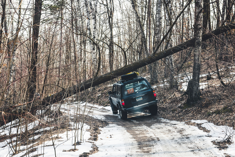 Forest Lake Auto Group >> #MorriesRoadTrip Goes Off Road - Morrie's Auto Group