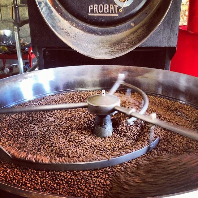 Dogwood Coffee Company