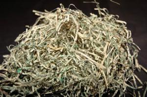 shredded money